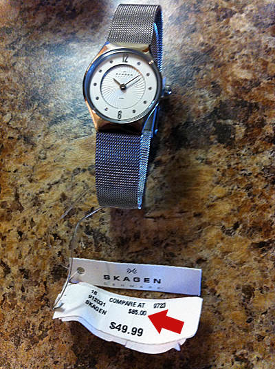 skagen denmark watch price