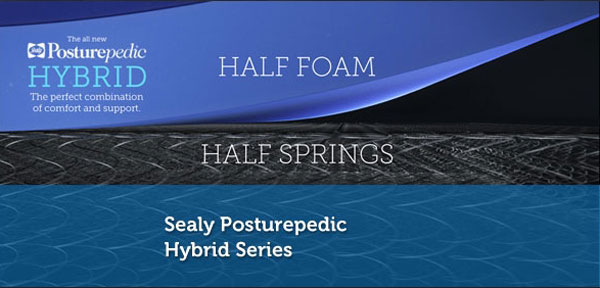 Sealy-Hybrid-Graphic