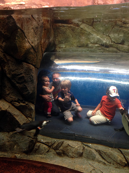 Kids_Tube_GeorgiaAquarium