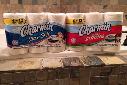 Charmin-Summer-Featured