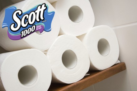 Five rolls of white toilet paper