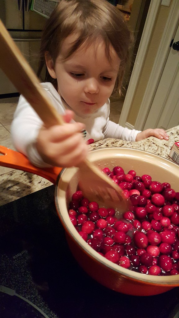 StirringCranberries