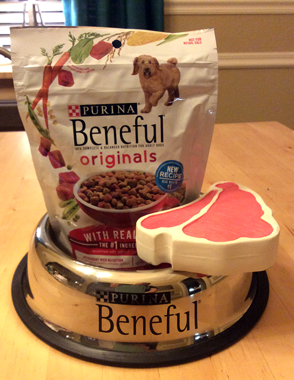 Beneful_NewDryDogFood_Beef